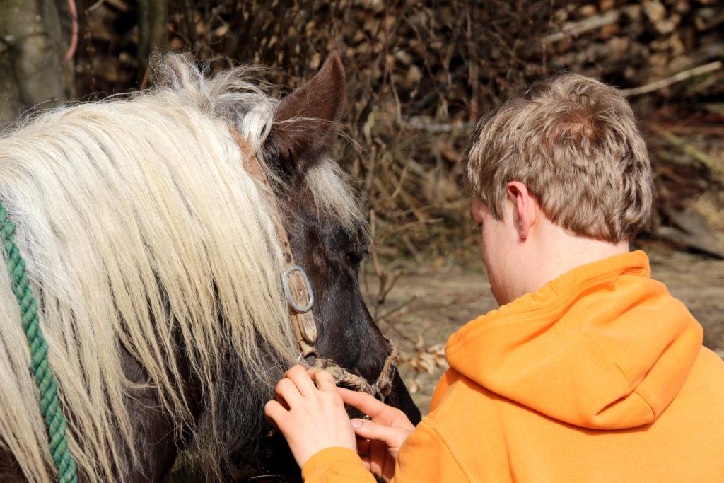 Jugendlicher mit Pferd